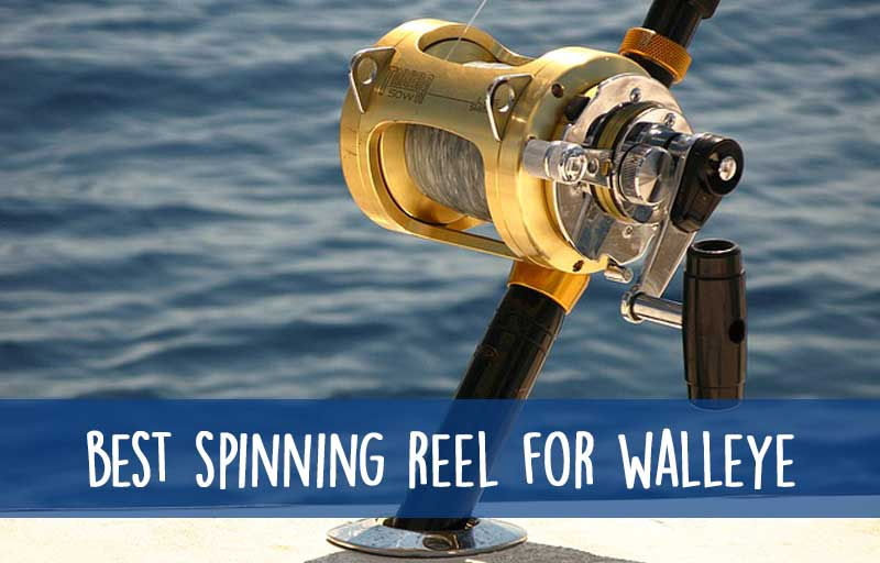 Best Walleye Spinning Reel