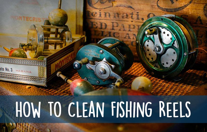 Fishing Reels Cleaning Guide