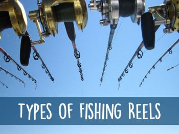 fishing reel types
