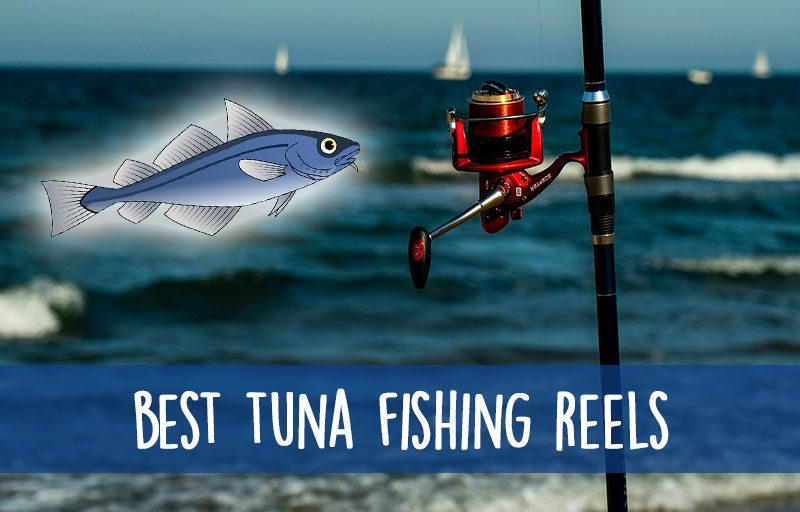 reel for tuna fishing