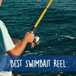Best Swimbait Reel